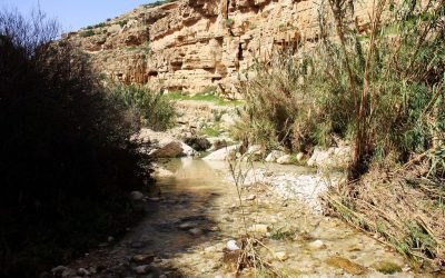 Wadi Qelt and a Walk through the Valley of the Shadow of Death
